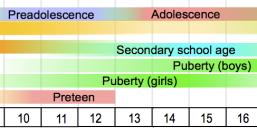Adolescence Chart